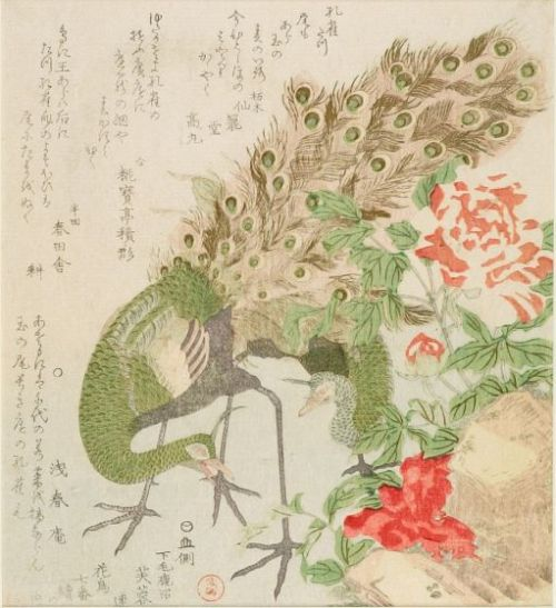 Peacock and Peony, from the series Seven Bird-and-Flower Prints for the Fuyôren of Kanuma in Shimotsuke Province by Kubo Shunman, Edo period, circa 1810