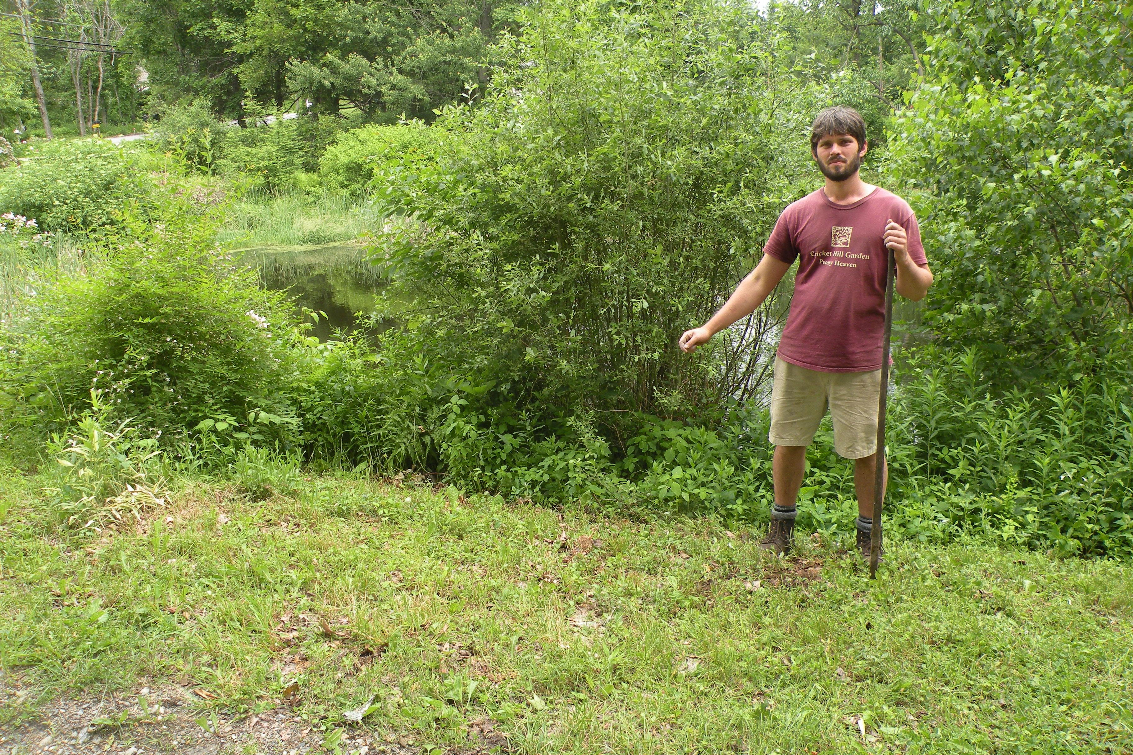 Landscaping Rocky Soil - Red de jardinería