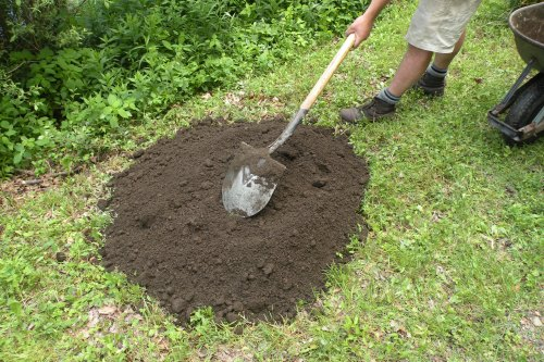 One large wheel barrow full of finished compost achieves two goals, it adds organic material to the planting area will also smothering the unwanted grass.