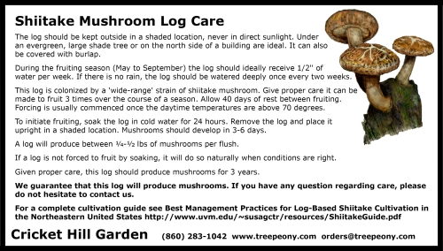 shiitake care sheet
