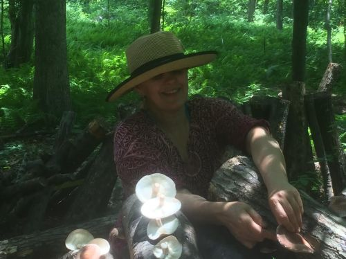 Kasha hard at work harvesting shiitake mushrooms in 90 degree heat.
